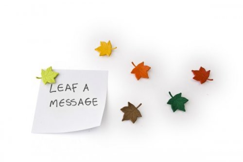 QUALY Leaf A Message Magnet 6er-Set